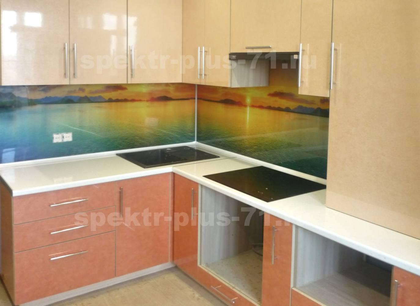 """Кухня """"Спектр-Плюс"""" 11"""