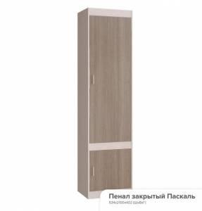 Шкаф закрытый Паскаль