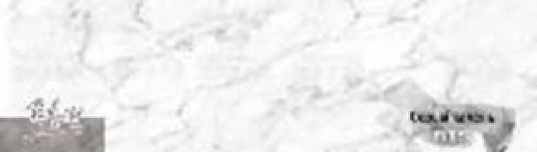 Стеновая панель Бон аппетит Серый камень