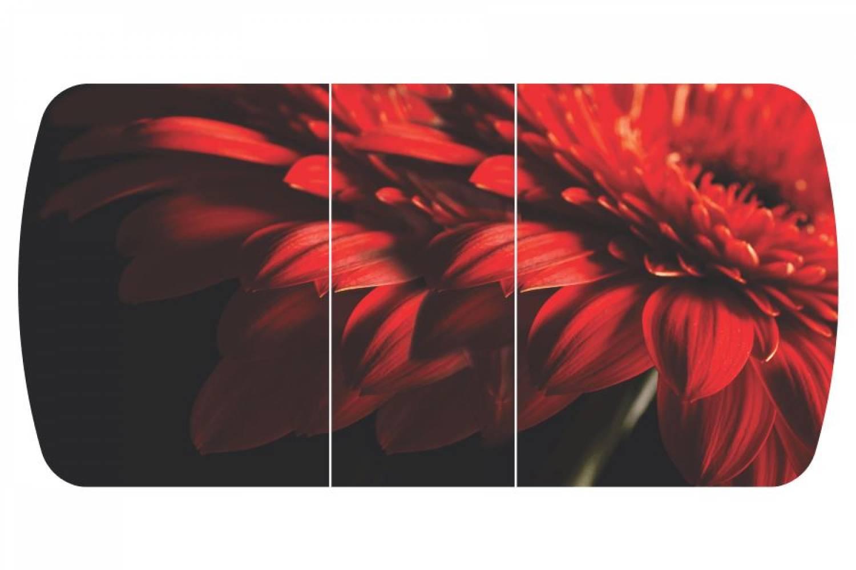 Стол раздвижнойБостон-3 Красная гербера с цельной вставкой 1100*700 опора брифингфото