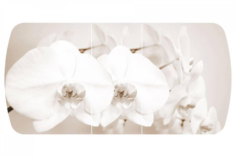 Стол раздвижнойБостон-3 Лунная орхидея с цельной вставкой 1100*700 опора брифингфотопе