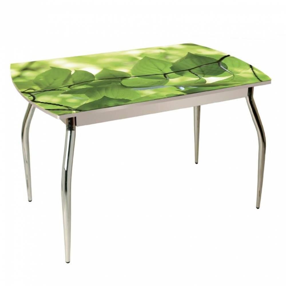 Стол обеденный 5.1 березовый цвет