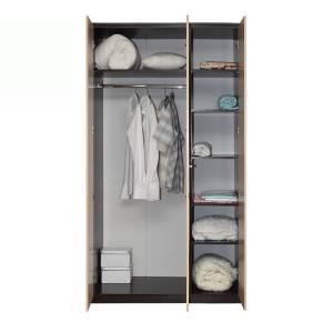 Корпус шкафа для одежды 06.56 РОЗАЛИЯ (Венге/Золотой ясень)